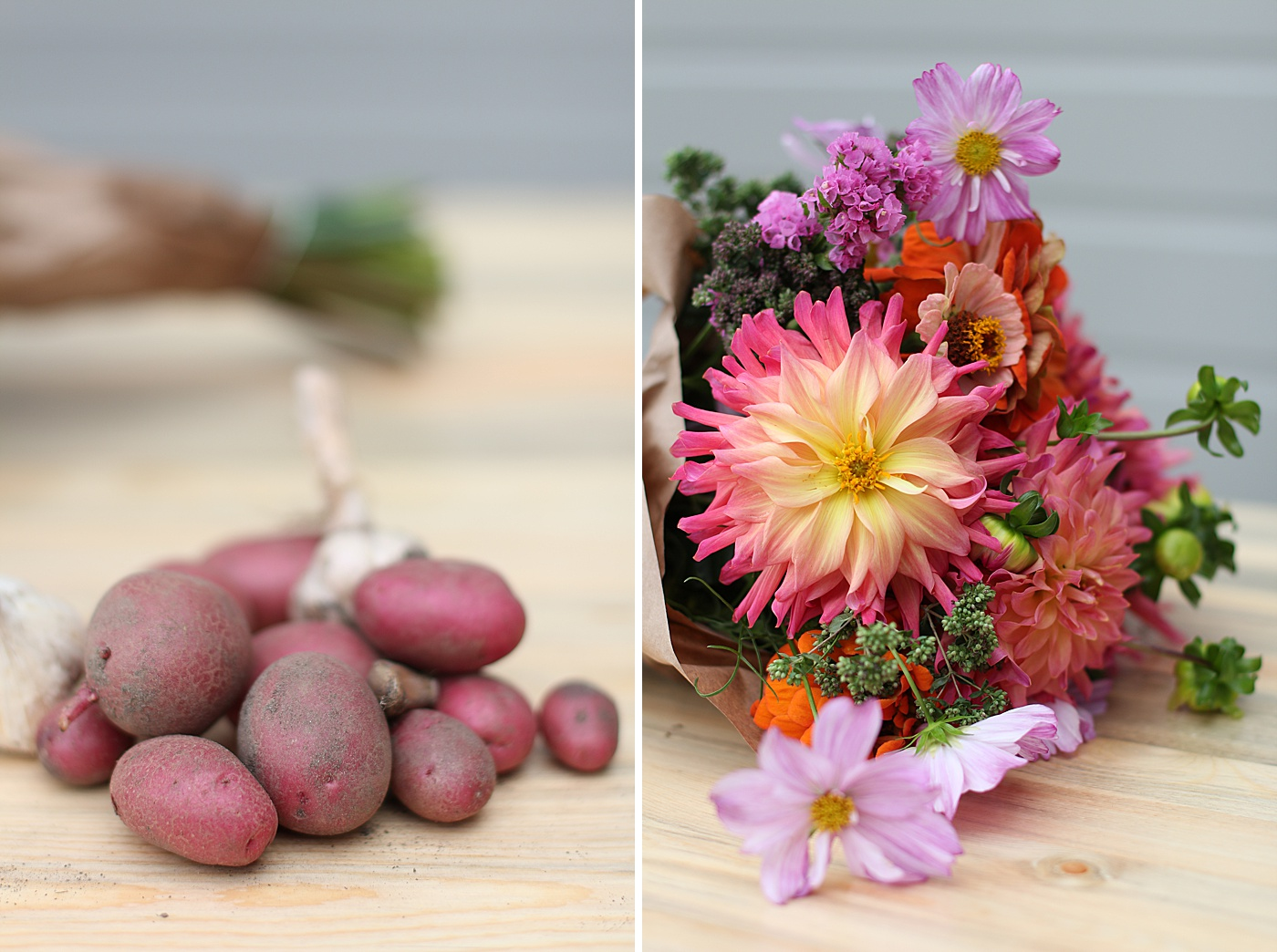 colorful flowers and potatoes
