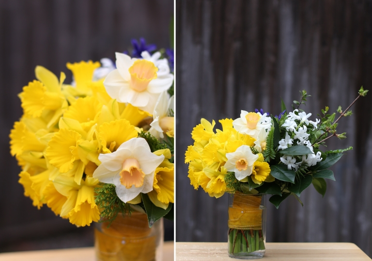 yellow daffodils in a bouquet with dark green leaves